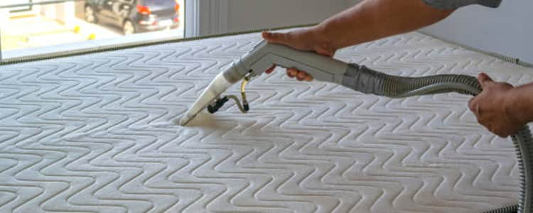 Best Mattress Cleaning Bayswater