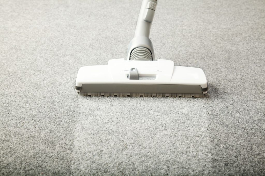 Self Carpet Cleaning At Home Vs Professional